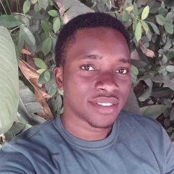 Kingsley Gyang-Freelancer in Accra,Ghana