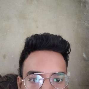 Bala Krishnan-Freelancer in ,India