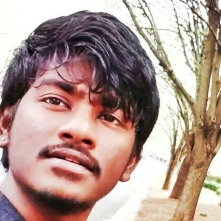 Prapul Kumar Dasari-Freelancer in Charlotte, North Carolina Area,USA