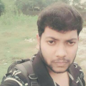Subrata Sarkar-Freelancer in ,India