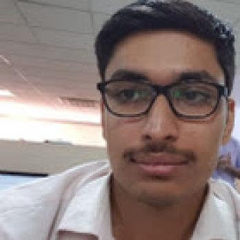 Ashish  Aggarwal-Freelancer in India,India