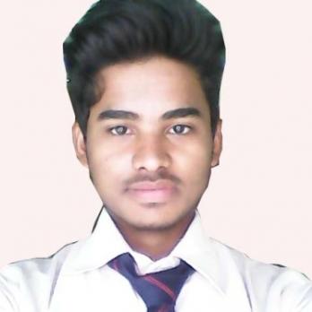 Rabi Shankar Ruidas-Freelancer in Asansol,India