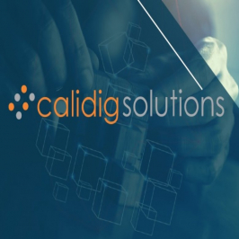 Calidig Solutions-Freelancer in Chandigarh,India