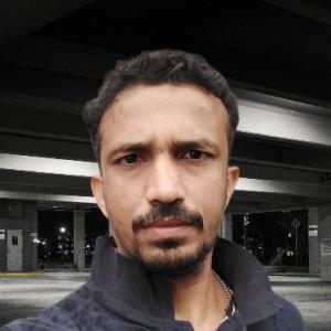 Hemant Paliwal-Freelancer in ,India