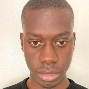 Abdoulaye Ndigue Sene-Freelancer in Dakar,Senegal