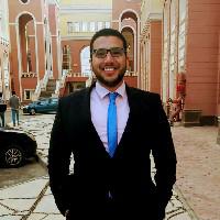 Mohamed Mahmoud-Freelancer in ,Egypt