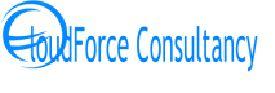 Cloudforce Consultancy-Freelancer in New Delhi,India