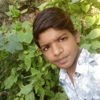 Rahul Goyal-Freelancer in ,India
