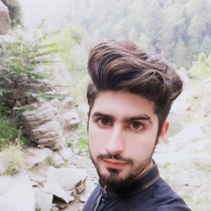 Syed Mansoor Shah-Freelancer in islamabad,Pakistan