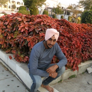 Shamsher Singh-Freelancer in ,India