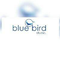 Bluebird Media-Freelancer in Ghaziabad,India