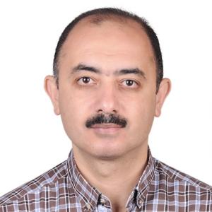 Marwan Hefnawy-Freelancer in Alexandria,Egypt