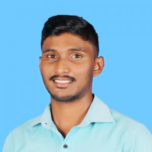 Perinbaselvan-Freelancer in Kandy,Sri Lanka