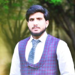 Shezan Khan-Freelancer in Rawalpindi,Pakistan